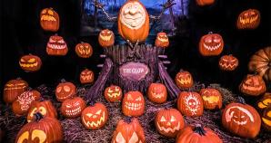 the glow a jack o lantern experience - Halloween Northern Virginia