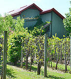 greendance-winery-at-sand-hill