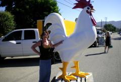 savor the central coast chicken
