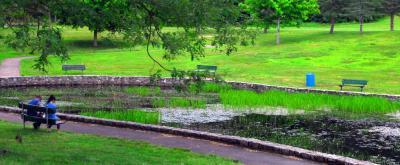 Diamond Hill Park