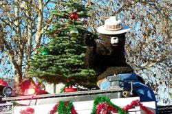Smokey the Bear at Springfield's Holiday Parade