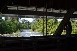 The View from Unity Covered Bridge by Sally McAleer