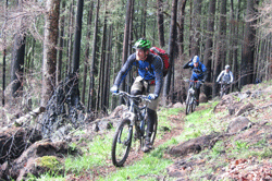 Oakridge Mountain Biking by Richard Sweet