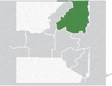 Highlighted Region