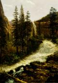 Albert Bierstadt (American, 1830-1902) Nevada Fall, Yosemite 1880. Oil on paper on canvas, 27 ½ x 20?. Gift of Robert F. Rockwell, Jr.
