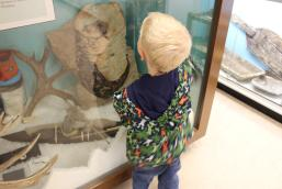 This giant fossil captured his imagination