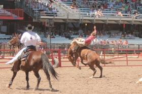 CFD Rodeo edit tiny