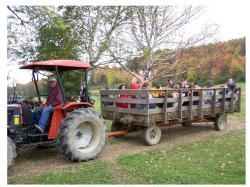 Faranda Farm Wagon