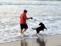 Man and dog at the beach