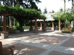 Top 5 Brown Bag Lunch Spots in Seattle Southside: Angle Lake Park