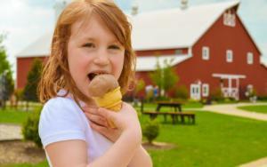 Fair Oaks Farms Ice Cream