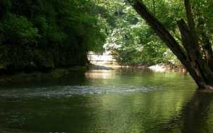 Lower Howard's Creek Nature Preserve