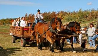 Hay ride at Green Bluff in Spokane