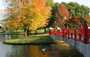 This is a picture of the pond and the bridge in Big Spring Park during the fall season.
