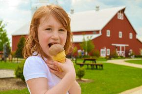 Fair-Oaks-Farms-ice-cream