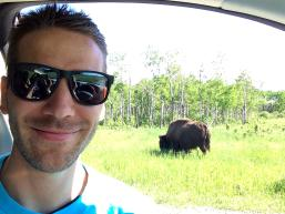 Bison Enclosure in Riding Mountain National Park