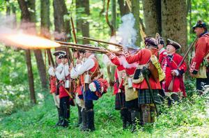 Bushy Run Battlefield
