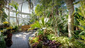 W.W. Seymour Botanical Conservatory