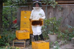 Summer Smiles Honey Farm Beekeeping