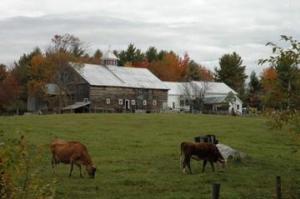 Morrill Farm