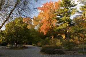 Planting Fields Arboretum & Coe Hall Mansion State Historic Park 342
