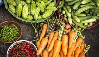 Templeton Farmers Market