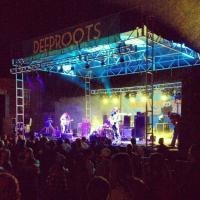 Deep Roots Bands