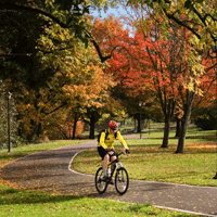 Fall Bike Ride in Eugene by Jamie Hooper