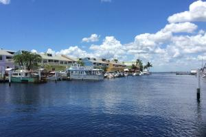#NoAlgae at Fishermen's Village on Charlotte Harbor