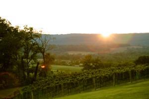 Sunset Hills Sunset