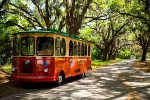 Saint Simons Colonial Island Trolley Tours