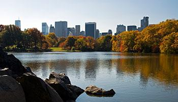 Central Park Lake View of the city