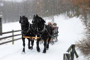 Horse-Drawn Sleigh Ride, Nemacolin Woodlands Resort