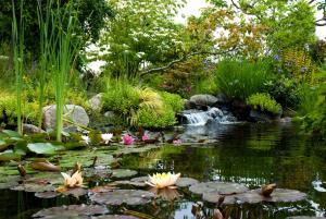 Highline-SeaTac-Botanical-Garden.