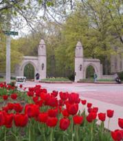 CollegeTown.jpg