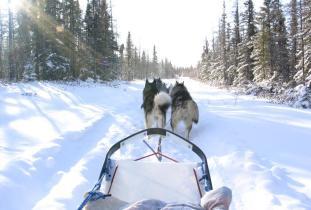 Wapusk National Park of Canada