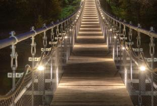 Souris Swinging Bridge at Night