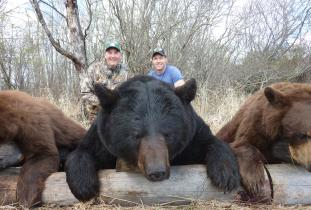 Another Booner Black Bear