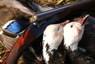 Manitoba Waterfowl Hunting Outfitter