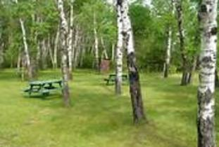 Interlake_Forest_Center_-_Wayside_Park_Campground.jpg