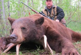 Agassiz Outfitter, black bear hunting 4