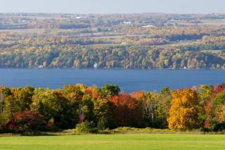 Fall Foliage Cayuga County