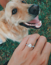 Photo of engagement ring next to a dog