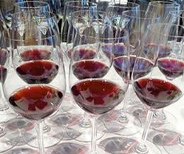 Paradise Springs Winery: Tastings