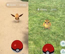 Mount Vernon Pokemon Go