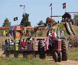 Cox Farms fall festival