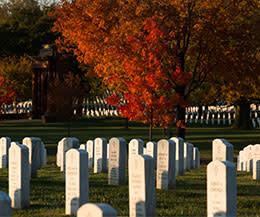 Arlington Cemetery Fall