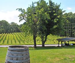 Paradise Springs Winery: Founding