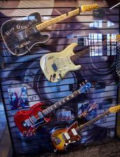 Songbirds Guitar Collection