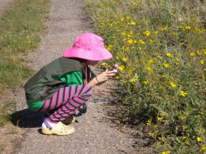 Making Memories: Kids' Photojournaling in Rocky Mountain National Park - Image